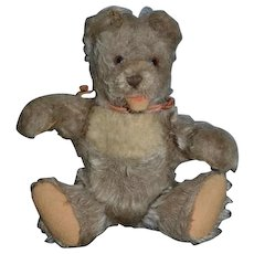 Old Teddy Bear Steiff Miniature W/ Squeaker Jointed Cabinet Size
