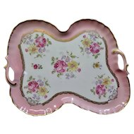 Vintage Limoges Hand Painted Porcelain Tray