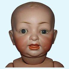 """Hertel & Schwab 14.5"""" Bisque Head #151 Character Baby Doll Germany c1910"""