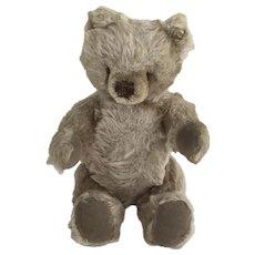 "10"" Steiff bear"