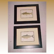 Pair of Framed Antique Chromolithograph Fishes, 1892