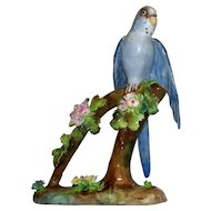 "Lovely  Vintage  Crown  Staffordshire "" Parakeet "" by J.T. Jones    perfect"