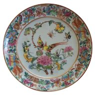 Antique Chinese Famille Rose with Exotic Birds, Butterflies, Insects, Dragons( Frogs), Scrolls, etc! 18th century