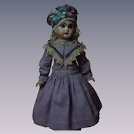 Lovely Violet Dress w/Petticoat Capelet and Beret for
