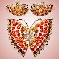 Fabulous FALL COLORS Butterfly Design Rhinestone Brooch Set
