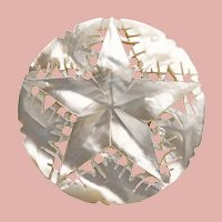 Gorgeous STAR Carved Mother of Pearl Vintage Brooch