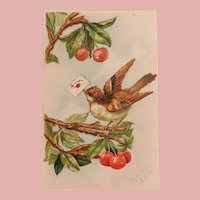 Antique Messenger Bird with Love Letter Postcard - in Cherry Tree