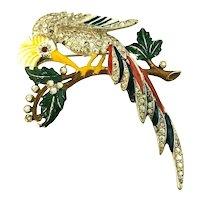Incredible Enameled & Rhinestone Embedded Large Figural 1940's Bird Brooch