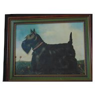 Paul Stagg Framed Scottish Terrier