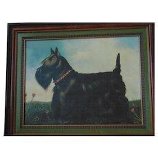 Paul Stagg Framed Scottish Terrier