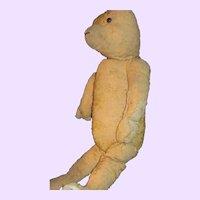 "20"" Well loved Early Teddy Bear needs TLC Free P&I US Buyers"