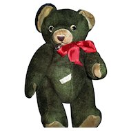He's Cute,Mohair,Knickerbocker,GREEN Teddy Bear !!!! Free P&I US Buyer
