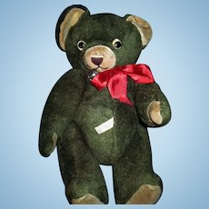 He's Cute,Mohair,Knickerbocker,GREEN Teddy Bear !!!! Free P&I US Buyer