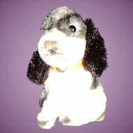 "So Sweet Ideal 4.5 "" Spaniel Pup Free P&I US Buyer"
