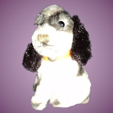 """So Sweet Ideal 4.5 """" Spaniel Pup Free P&I US Buyer"""