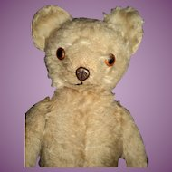 "17"" Metal Nose Knickerbocker Teddy Bear Free P&I US Buyer"