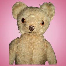 "17"" Metal Nose Knickerbocker Teddy Bear Free P&I US Buyer"