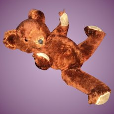 "Wonderful 20"" Cinnamon Mohair Teddy Bear Free P&I US Buyers"