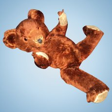 "Wonderful 20"" Cinnamon Mohair Teddy Bear Free P&I US Buyers"