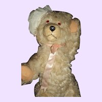 Teddy Bear w/Personality Take a Look Free P&I US Buyer