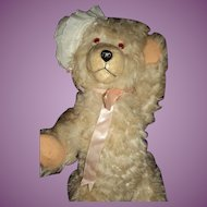 Teddy Bear w/Personality Take a Look Free P&I US Buyer