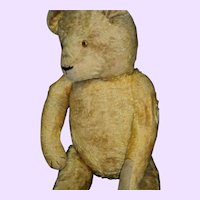 "27"" Gold Mohair Teddy Bear Free P&I US Buyers"