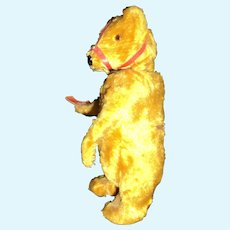 """7"""" Vintage Dancing Bear (doesn't dance) Free P&I US Buyers"""
