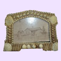Beautiful  Seashell Picture frame for your beautiful doll Free P&I US Buyers