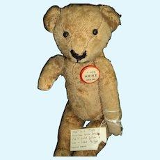 "Adorable 14"" American straw stuffed Teddy Bear Free p&i US Buyers"