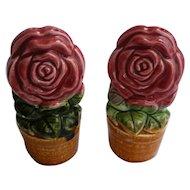 Red Roses in Flowerpots Ceramic Salt and Pepper Set