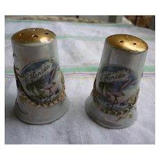 Colorful Florida Souvenir Ceramic Salt and Pepper Set