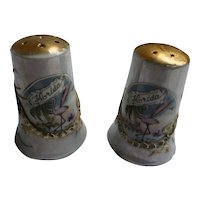 Colorful Florida Souvenir Ceramic Salt and Pepper Set