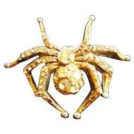 Rhinestones Studded Spider Goldtone Brooch