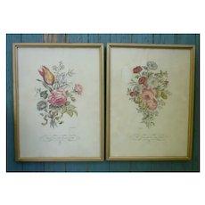 Framed Pair of Delicate Floral Botanical Prints IBFCO