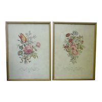 Framed Pair of Delicate Floral Botanical Prints IBFCO
