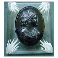 Bakelite Cameo with Reverse Carved Lucite Brooch Book Piece