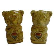 South Dakota Bears Souvenir Ceramic Salt and Pepper Set