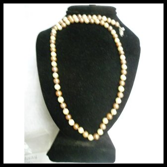 Unusual Uniform Single Strand Cream and Dyed Brown Cultured Pearl Necklace with Clasp