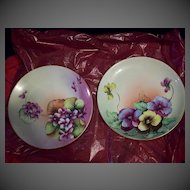 Fabulous Bavaria Hand Painted Flower Plate Set