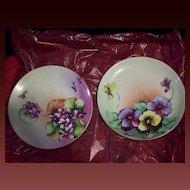 Fabulous Bavaria Hand Painted Flower Plate Set