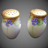 Old Bavaria Lovely Hand Painted Violet Shaker Set
