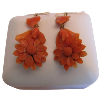 Fabulous Victorian Carved Coral Earrings