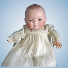 Antique German Bye-lo Baby Doll