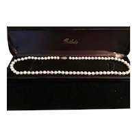 14k Gold Saltwater Cultured Akoyo Pearl Necklace  19 1/2""