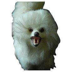 Antique French fashion dog