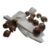 Set of 12 Seashell Tiger Cowrie Napkin Rings Holders