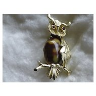 Signed Vintage Gerry's Jelly Belly Owl Pin Brooch