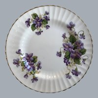 "Paragon bread and butter 6"" plate violets"
