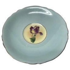 Paragon Beige orphan tulip saucer double warrants