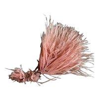 Vintage 1920's Flapper Era Pale Pink Ostrich Feather Millinery Spray